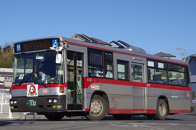 IMGP4161